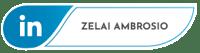 linkedinZelai